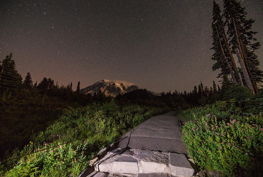 Night Path Photograph by Kristopher Schoenleber