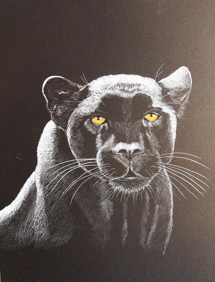 Panther Painting - Night Reflection by Lorraine Foster