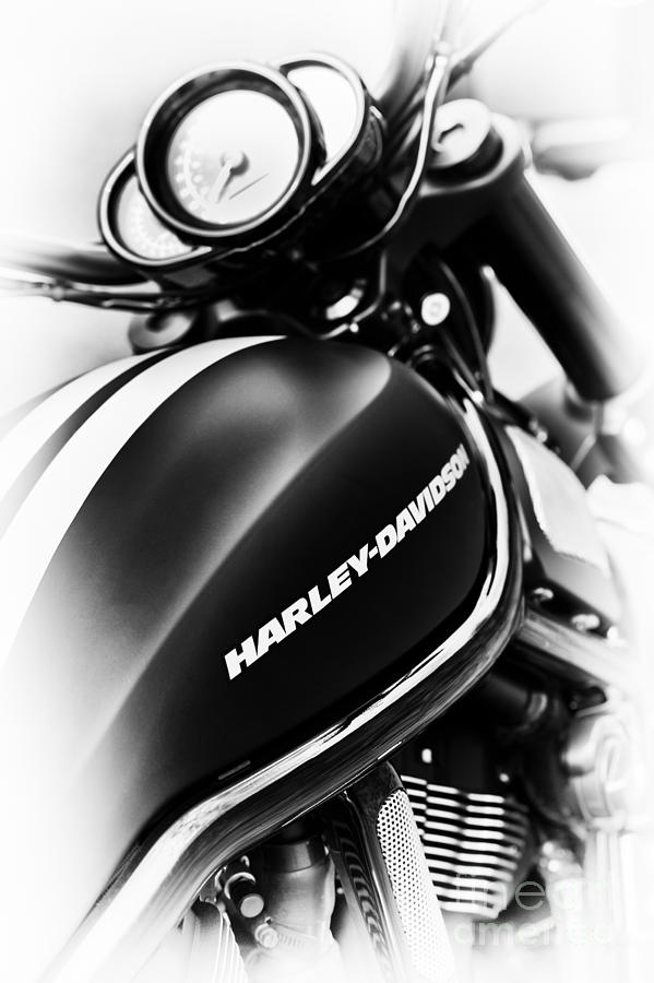 Harley Davidson Photograph - Night Rod by Tim Gainey