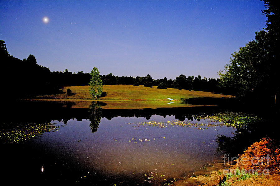 Night Scape Pond Photograph by Kevin Pugh