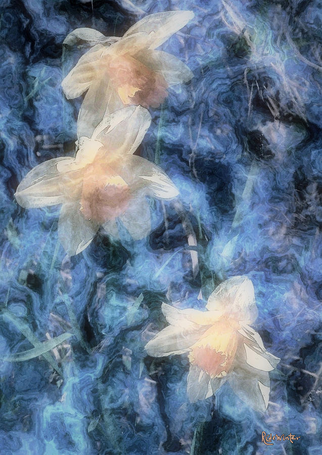 Daffodils Painting - Nighttime Narcissus by RC DeWinter