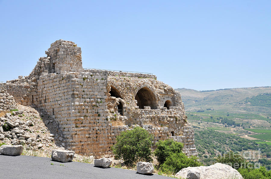 Nimrod Photograph - Nimrod Fortress National Park  by Shay Levy