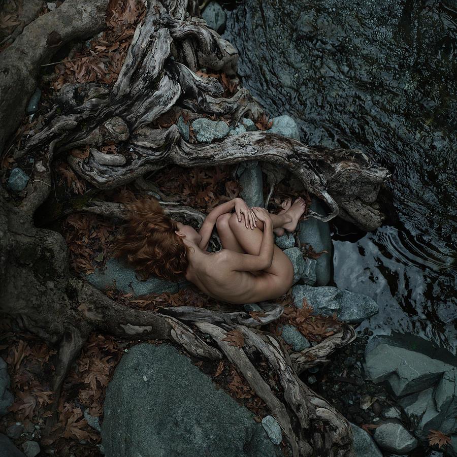 Nina In The Roots Photograph by Anka Zhuravleva