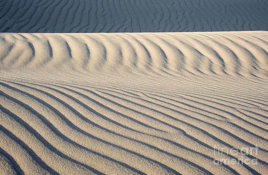 Dunes Photograph - Nipomo Dunes by Ron Hoggard