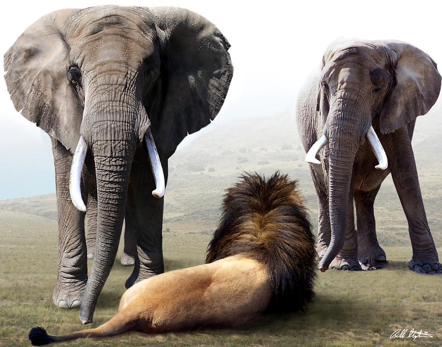 Elephants Digital Art - No Fear by Bill Stephens