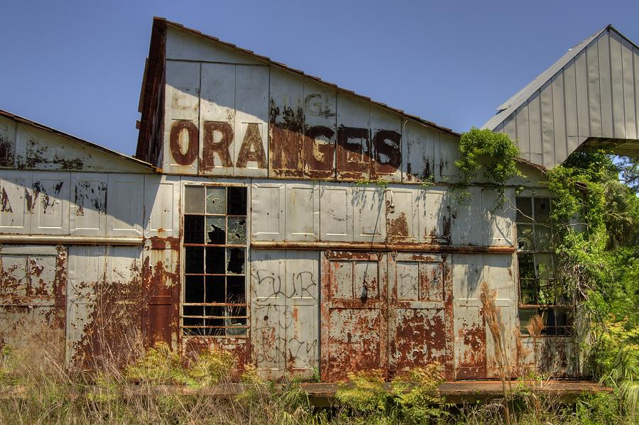 Oranges Photograph - No More Juice by Andrew Armstrong  -  Mad Lab Images