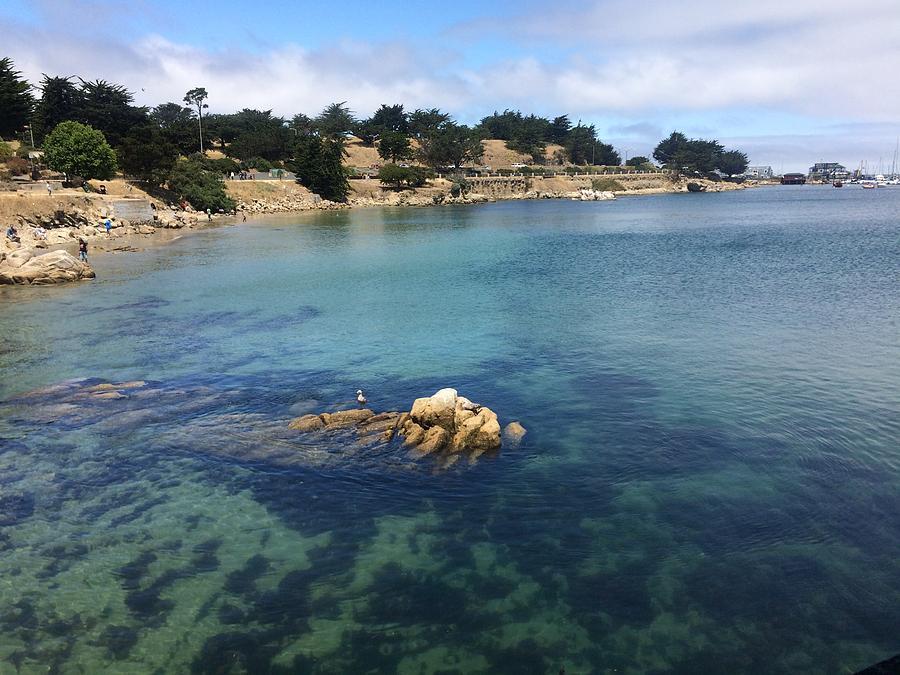 Monterey California Photograph - No Place Like Monterey by Glenda Collins