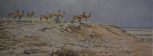 Antelope Painting - No Shade Springbok by Paul Apps