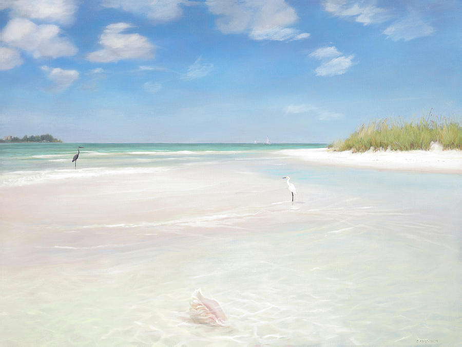 No. Siesta Key, Big Pass, So. Lido Beach by Shawn McLoughlin