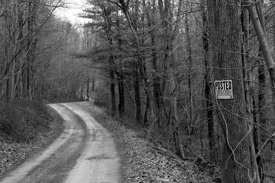 Posted Photograph - No Trespassing by Liz Allyn