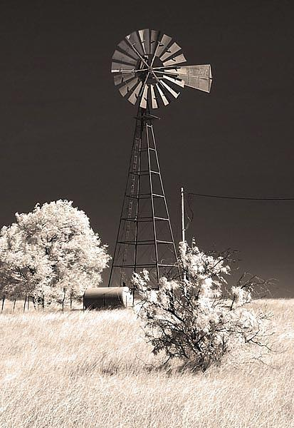 Infrared Photograph - No Water For Energy by Eileen Mandell