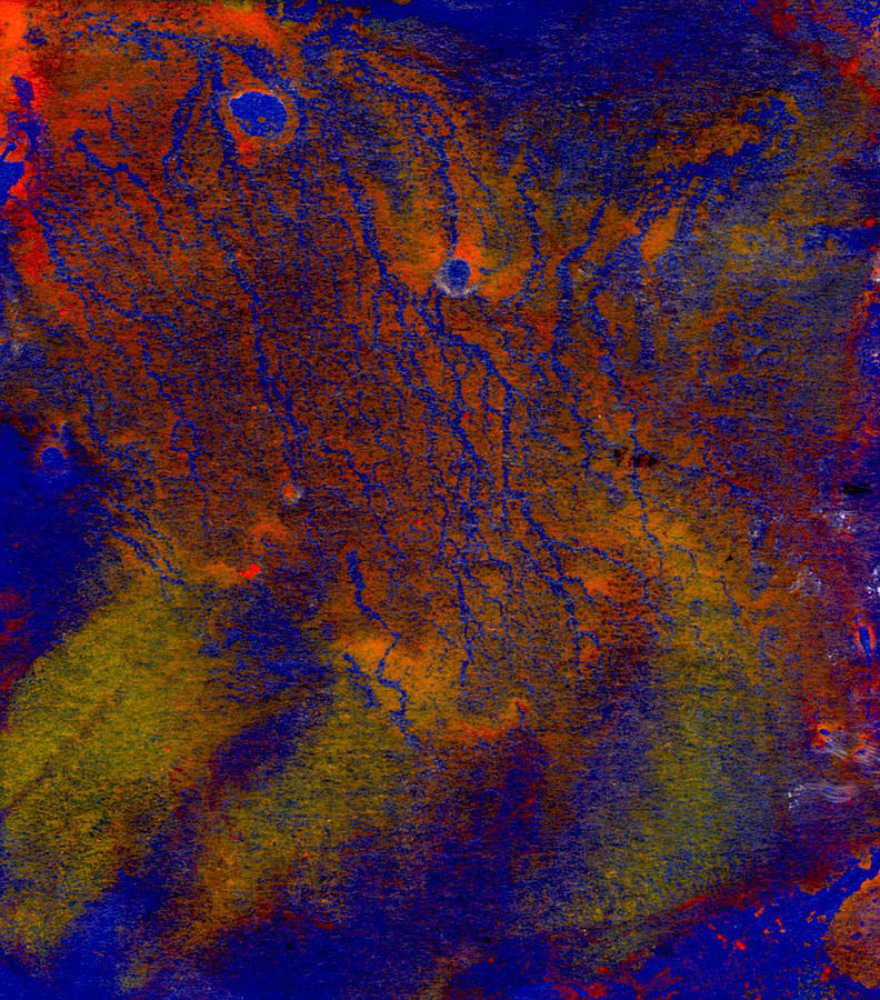 Abstract Pattern Digital Art by Dylan Gage