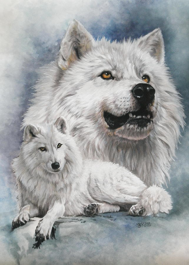 Wolf Mixed Media - Noble Intensity by Barbara Keith