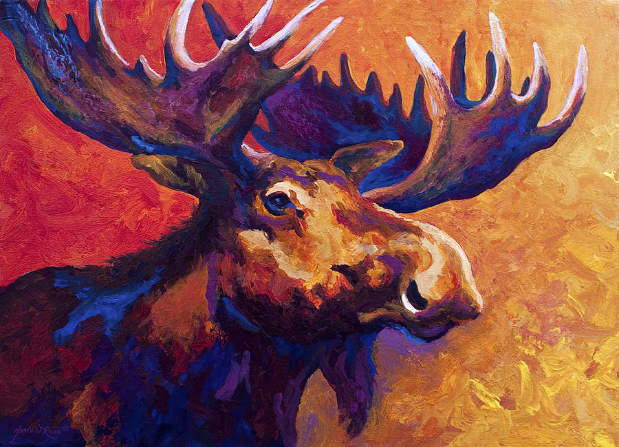 Moose Painting - Noble Pause by Marion Rose