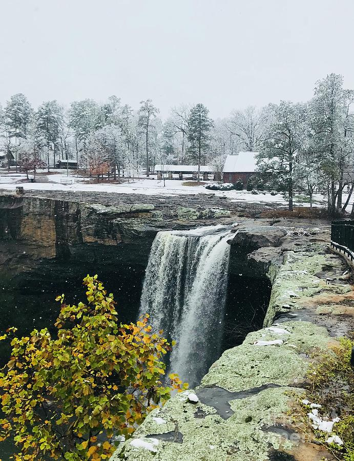 Noccalula Falls Park at Christmas by Amy Ledbetter Photograph by