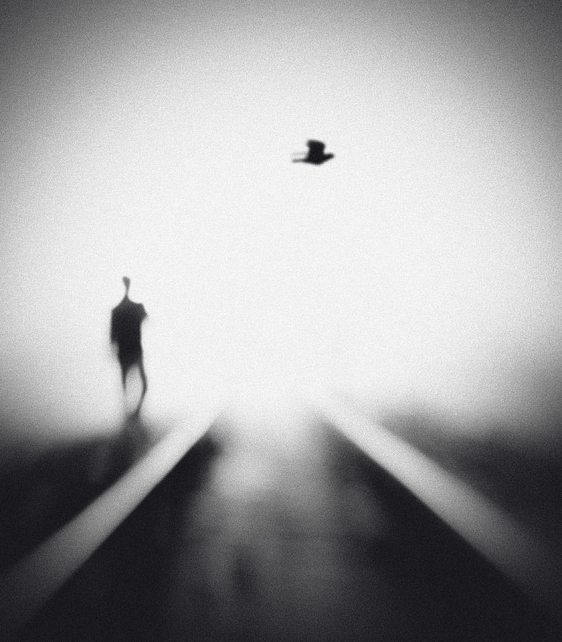 Rail Photograph - Nocturne by Hengki Lee