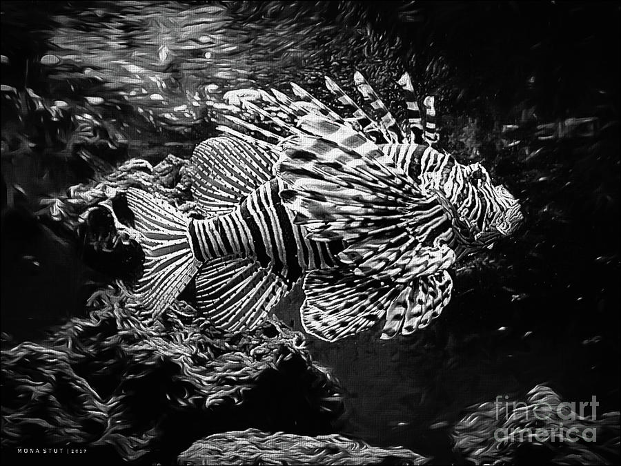 Lionfish Pterois Rotfeuerfisch Noir Mixed Media