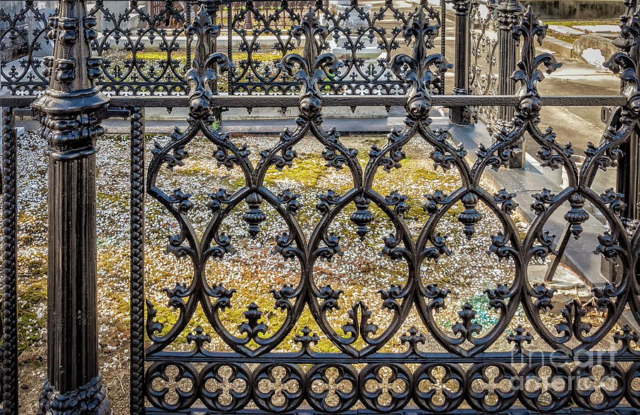 Nola Craftsmanship - Wrought And Cast Iron Fence Photograph