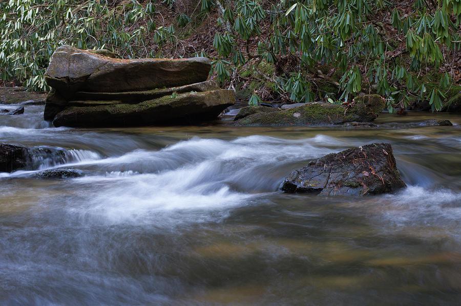 Noontootla Creek #1 Photograph