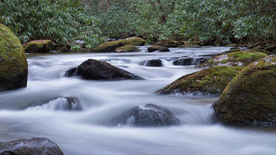Noontootla Creek #2 Photograph