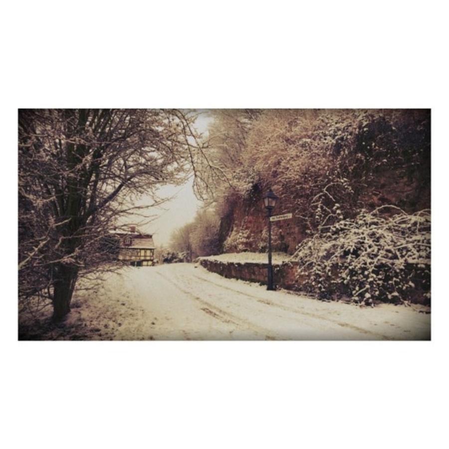 Walls Photograph - #nordhausen #snow #somedaysago #trees by Mandy Tabatt