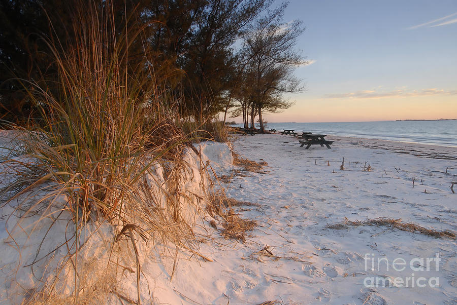 North Beach Photograph - North Beach by David Lee Thompson