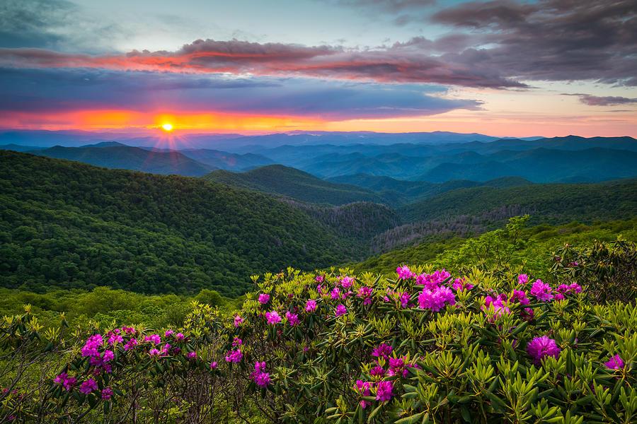 North Carolina Blue Ridge Parkway Landscape Craggy Gardens Nc Photograph By Dave Allen