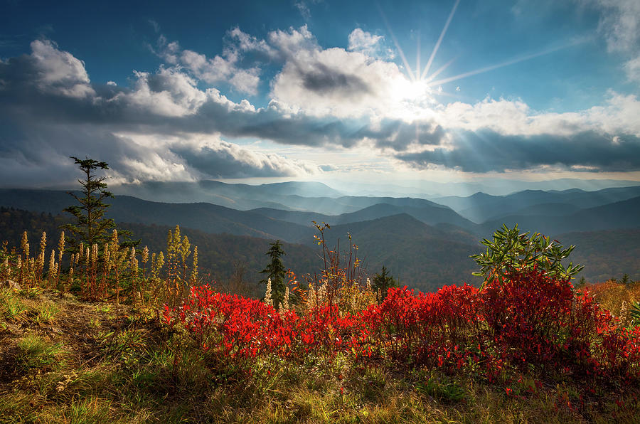 North Carolina Blue Ridge Parkway Scenic Landscape in Autumn by Dave Allen