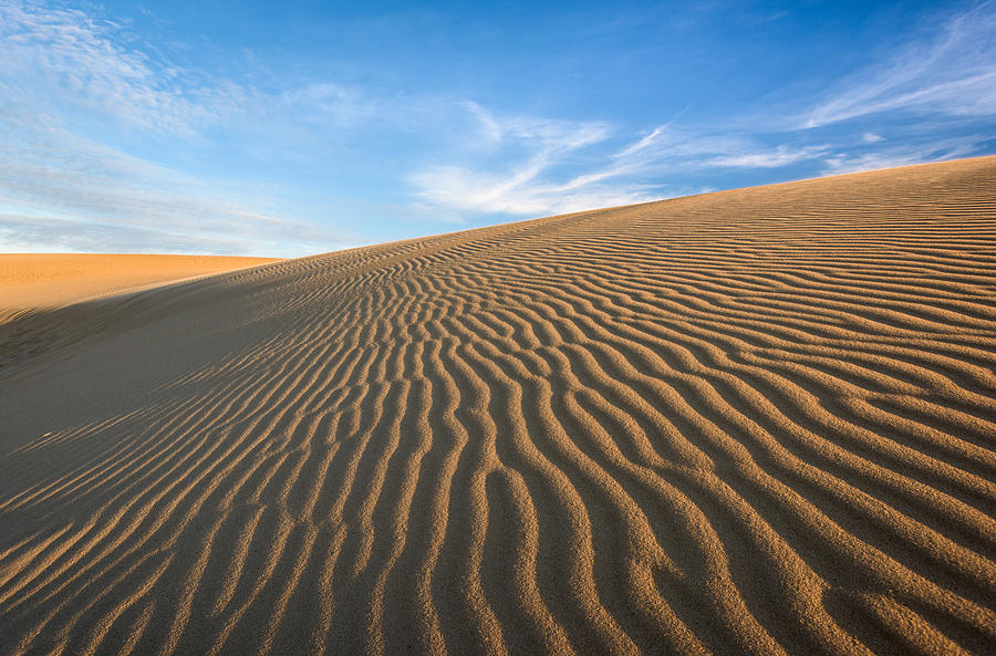 North Carolina Photograph - North Carolina Jockeys Ridge State Park Sand Dunes by Mark VanDyke