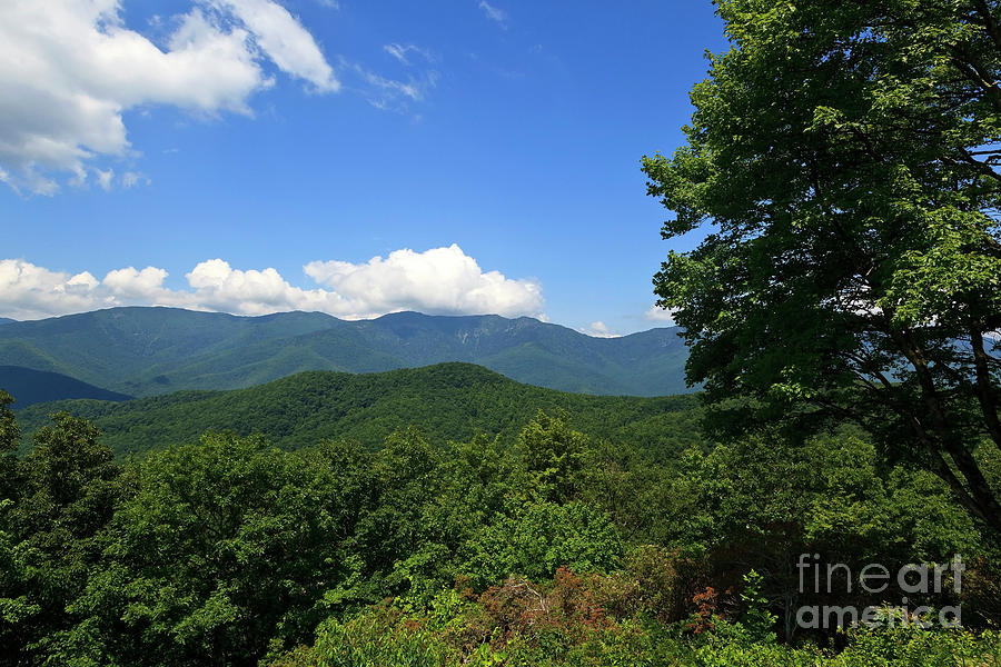 Mountains Photograph - North Carolina Mountains In The Summer by Jill Lang