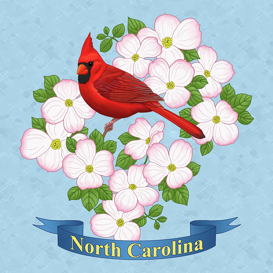 Bird Painting - North Carolina State Bird And Flower by Crista Forest