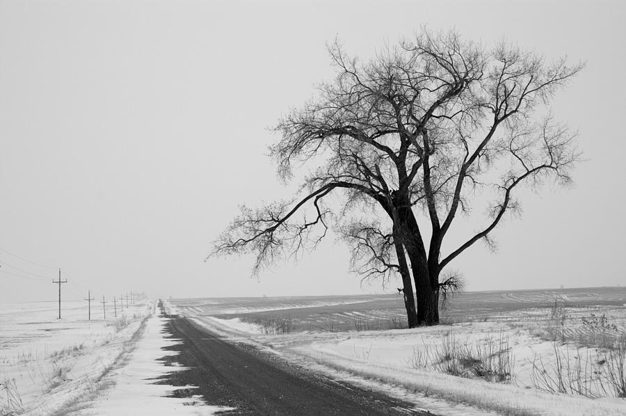 Cold Photograph - North Dakota Scenic Highway by Bob Mintie