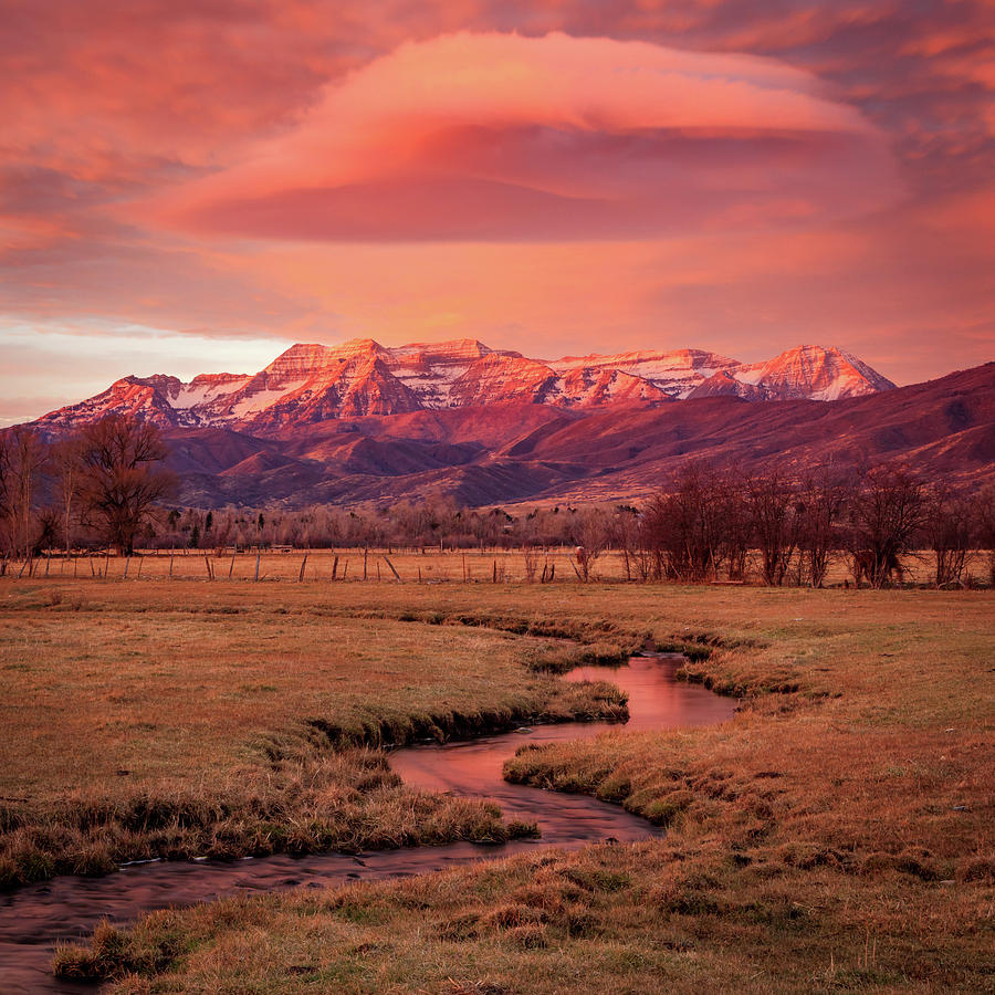 Heber Photograph - North Fields Scorcher by Johnny Adolphson