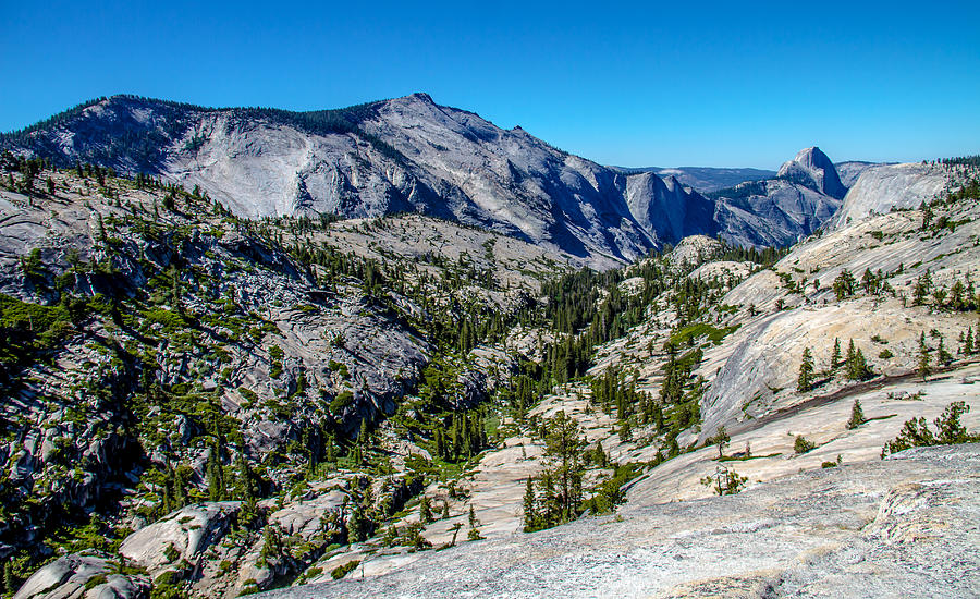 Acrylic Prints Photograph - North Side Of Half Dome Valley by Brian Williamson