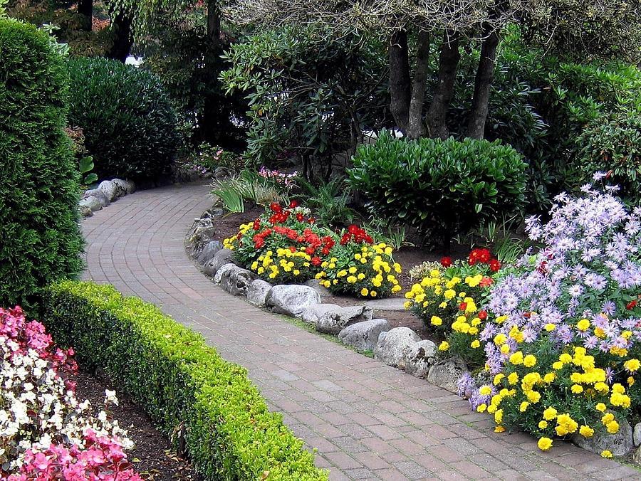 Garden Photograph - North Vancouver Garden by Will Borden