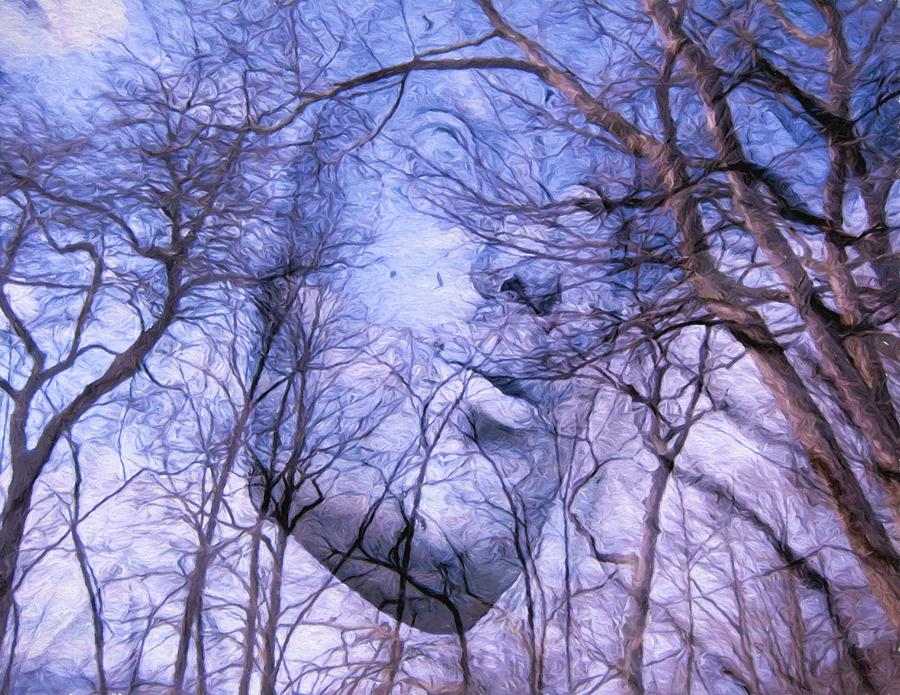 Collage Photograph - North Wind by Kathy Bassett