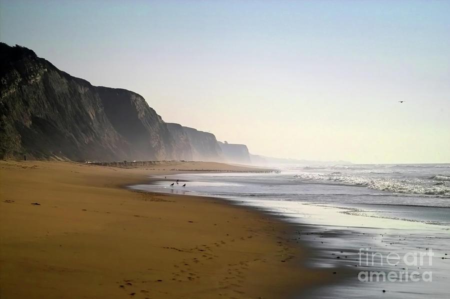Northern California Shoreline Photograph