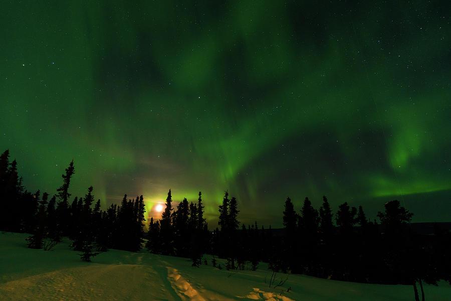 Northern lights with moon, Fairbanks, Alaska by Asif Islam
