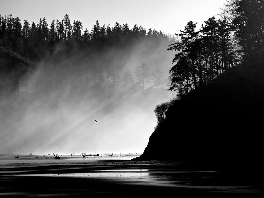 Oregon Photograph - Northern Oregon Coast by Carol Leigh
