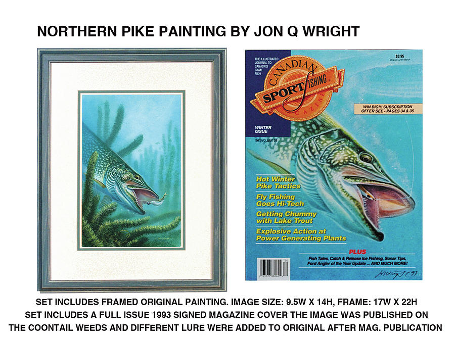 Jon Q Wright Painting - Northern Pike Original by JQ Licensing
