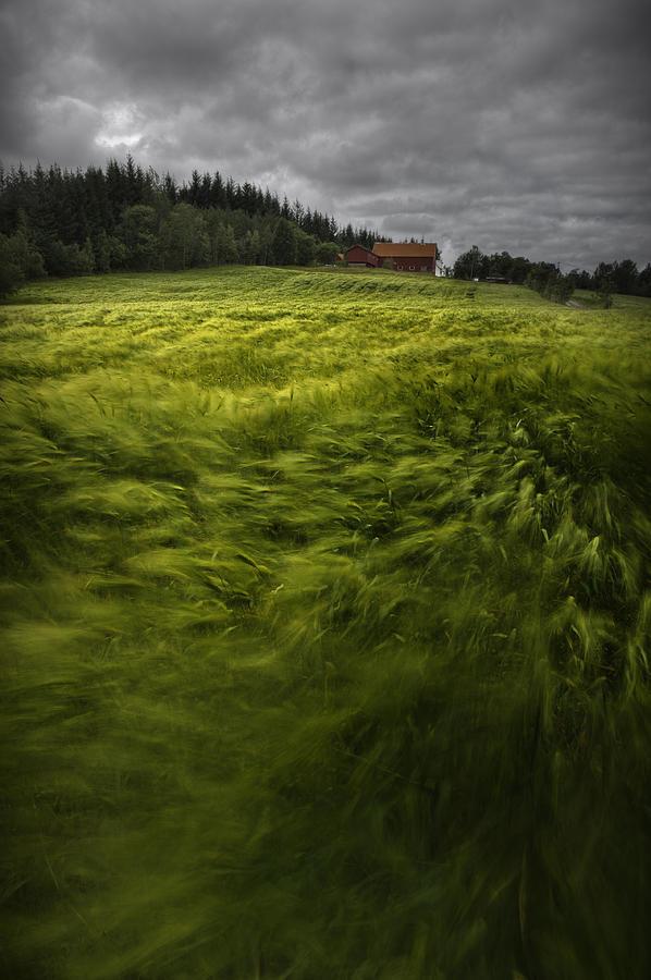 Landscape Photograph - Norwegian Wave by Andy Astbury
