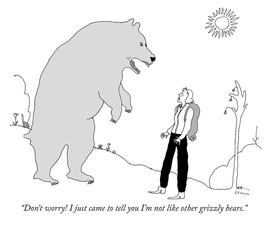 Not Like Other Grizzly Bears