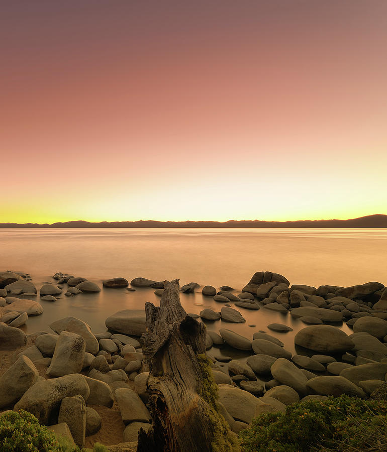 Not So Secret Cove At Lake Tahoe During Sunset On The Beach With Rocks, Reflections And Fallen Tree Photograph