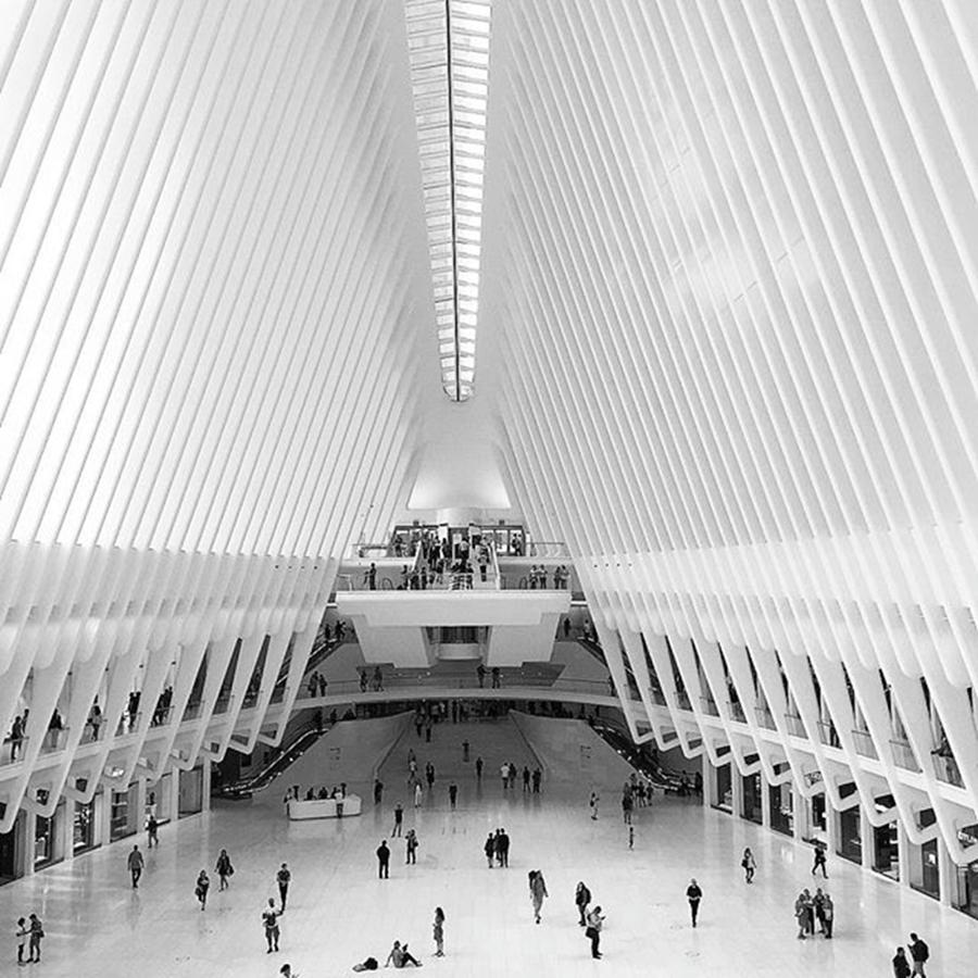 1wtc Photograph - Not Too Far From The Madding Crowd At by Gina Callaghan