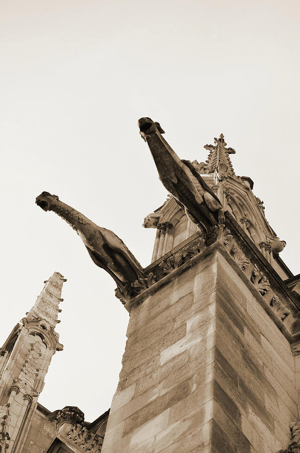Notre Dame Cathedral Gargoyles In Paris France Sepia