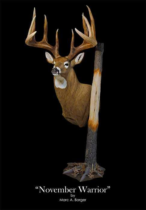 Whitetail Sculpture - November Warrior by Marc  Barger