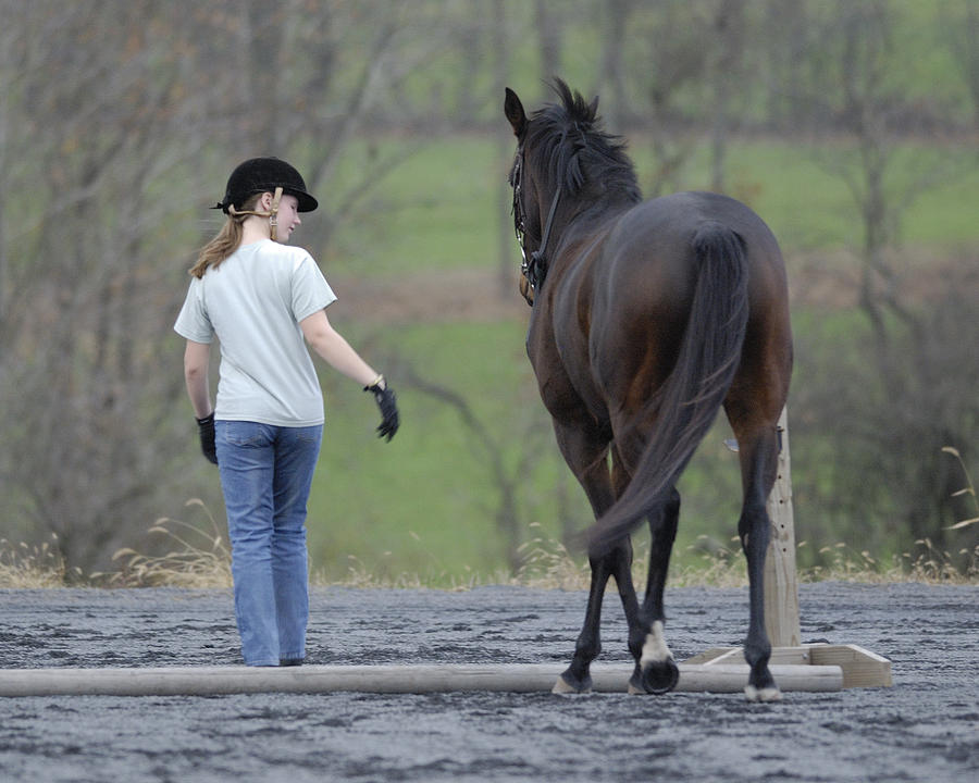Horse Photograph - Now Follow Me by Don Schroder