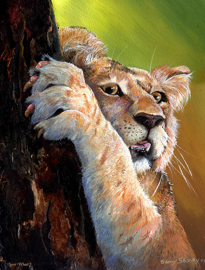 Lion Painting - Now What by Sherry Shipley