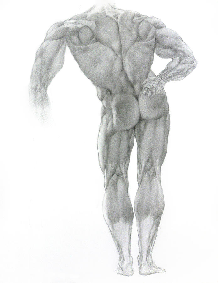 Nude Drawing - Nude 2 by Valeriy Mavlo