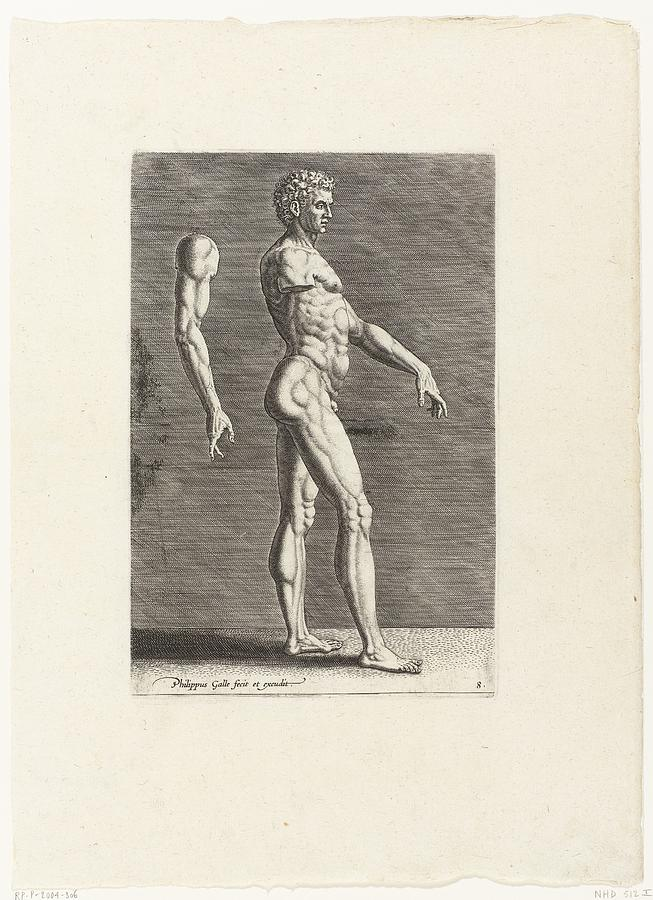 Anatomical Drawing Of Nude Man Walking To The Right Drawing by R ...